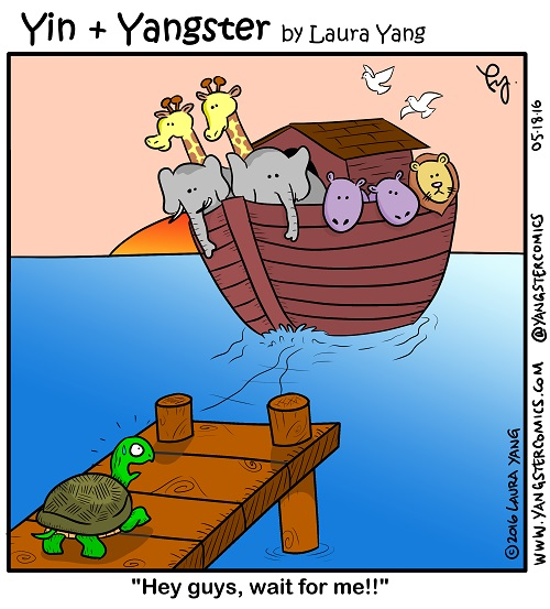 missed the boat noah's ark missed the boat slow poke turtle