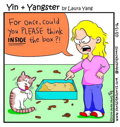 cat think outside the box